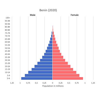 population pyramid of Benin