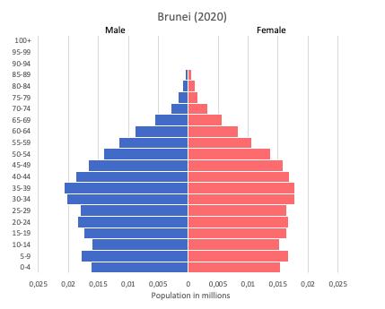 Population pyramid of Brunei (2020)