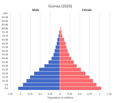 population pyramid of Guinea (2020)