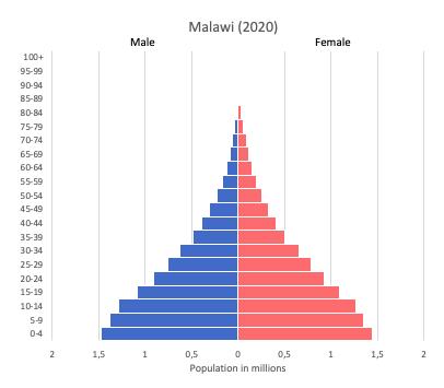 population pyramid of Malawi (2020)