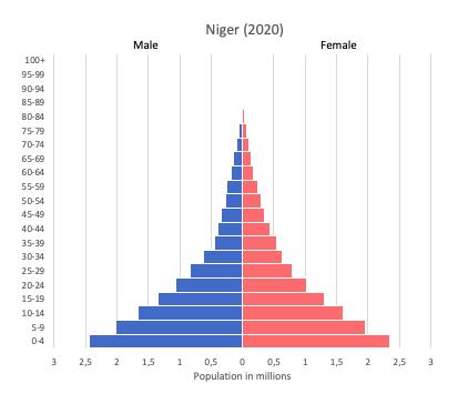 Population pyramid of Niger (2020)