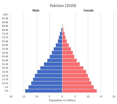 population pyramid of Pakistan (2020)