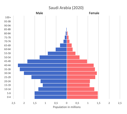 population pyramid of Saudi Arabia (2020)