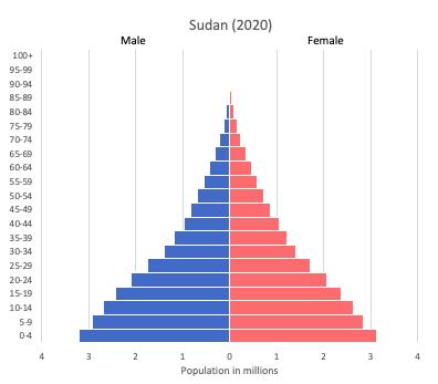 population pyramid of Sudan (2020)