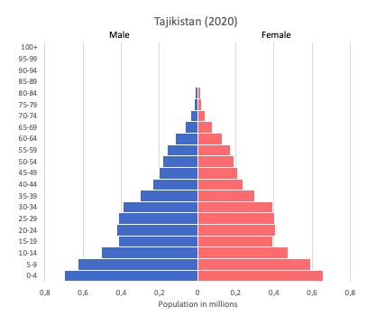 population pyramid of Tajikistan (2020)