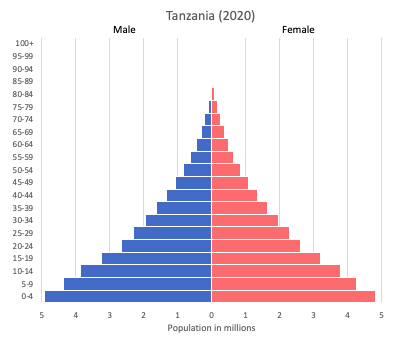 population pyramid of Tanzania (2020)