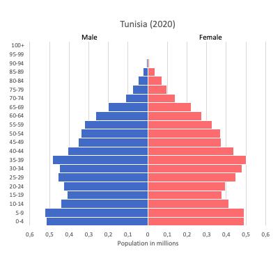 population pyramid of Tunisia (2020)