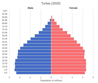 population pyramid of Turkey (2020)
