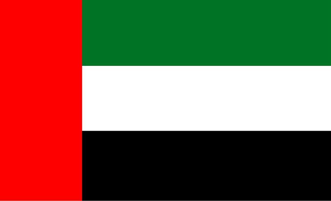 flag of United Arab Emirates (UAE)