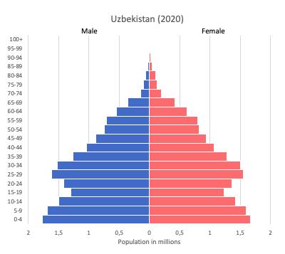 population pyramid of Uzbekistan (2020)