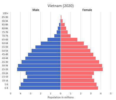 population pyramid of Vietnam (2020)