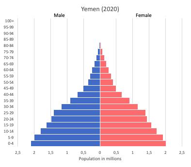 population pyramid of Yemen (2020)