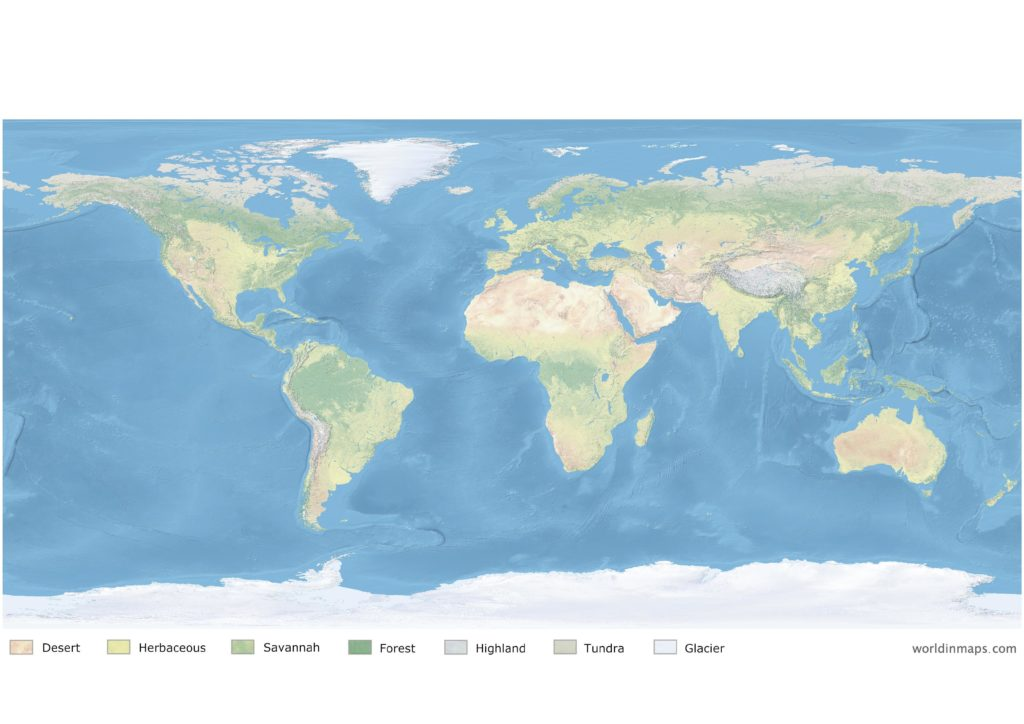 Land cover map of the world