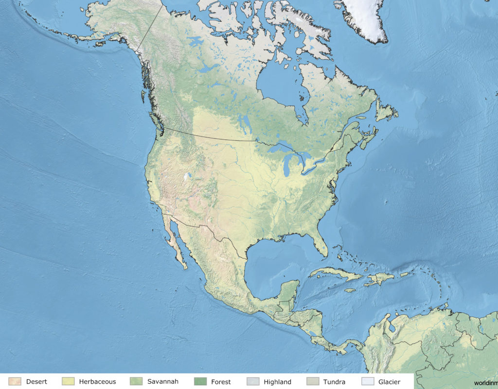 Land cover map of North America