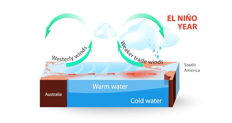 Diagram explaining the El Niño - Southern Oscillation (also called ENSO)