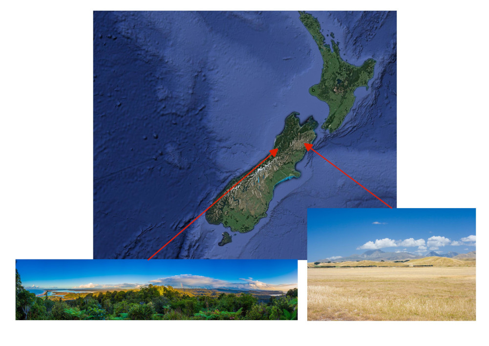 Map of the consequence of the Foehn winds (The Norwester) in New Zealand