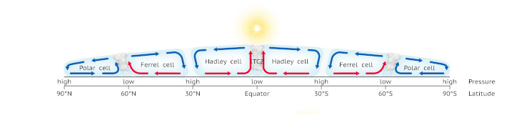 Diagram of the Ferrel cell and its interraction with the Hadley cell and Polar cell